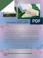 Budidaya Tempe Lamtoro Gung