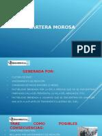 Informe de Gestion_cartera Morosa