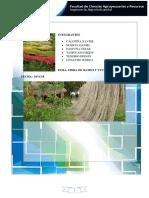 informe-de-fibras-yute-ramio-con-cuestionario-del-ramio.docx