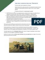 Organizzazione Dell'Agricoltura Nel Trecento