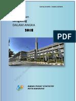 Kecamatan Lengkong Dalam Angka 2018.pdf