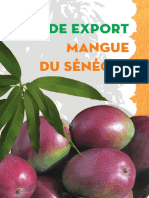 guide_mangue_export.pdf