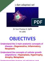 Jejas dan adaptasi sel.pptx