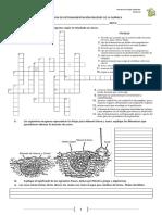 Guía de Retroalimentación Origenes de La Química