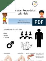 Kesehatan Reproduksi Laki - Laki