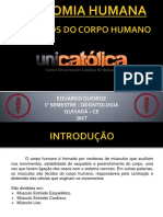 Anatomiahumana Msculosdocorpohumano 170602025135 (1)