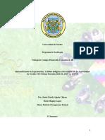 sistematización cabildo-1.docx