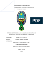 TDR Sorat Planificacion