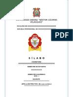 2019 silabos.doc