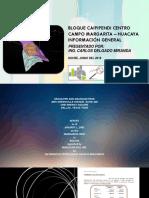CAMPO MARGARITA HUACAYA INFORMACION GRAL.pdf