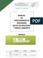 Manual Con 30 Procedimientos de Trabajo Seguro 2015