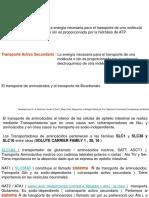 transporteactivo02.pps