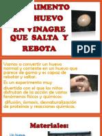Experimento Huevo Saltarin