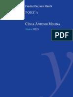 Cesar Antonio Molina-March.pdf