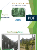 Forests Types