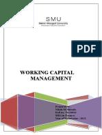 176638051-working-capital.doc