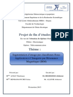 Segmentation d'image par classifieurs flous Application à l'Imagerie par Résonance Magnétique IRM.pdf