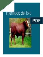 FCV UNCPBA Fisiopatologia de La Reproduccion - Infertilidad_del_toro