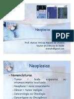 10 Neoplasias
