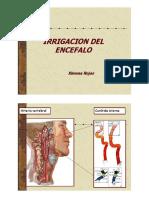 Vascularizacion_SNC