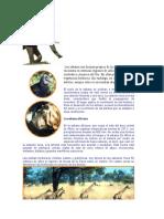 Las Sabanas Son Biomas Propios de Los Trópicos