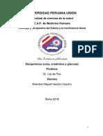 BIOQUÍMICA, UREA, CREATININA Y GLUCOSA.docx