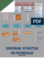cronograma de practicas pre profesionales