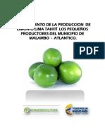 Proyecto Malambo citricos.pdf