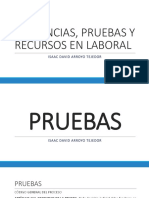 AUDIENCIAS, RECURSOS Y PRUEBAS EN LABORAL