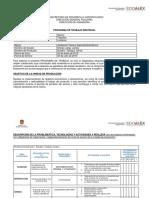 ACTIVIDADES A REALIZAR EN EL PT.docx