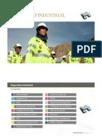 6.- Seguridad Industrial.pdf