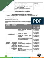 cronograma_actividades_sg_sst segundo (1).docx