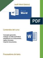 Programa Curso Word Basico