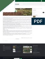Pesquisador Cria Irrigador Solar Automático Com Garrafas Usadas - SBEA - ASSOCIAÇÃO BRASILIEIRA de ENGENHARIA AGRÍCOLA
