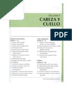 Cabeza_y_Cuelloa.pdf