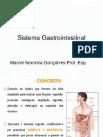 4. N2 - SITEMA DIGESTÓRIO.pptx