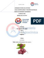CultivoRemolacha.docx