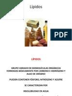 4. Lípidos-2-2018