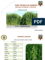 plantaavena-131116114748-phpapp02.pdf