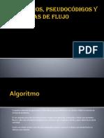Algoritmos 204