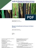 Manual de doenças do arroz.pdf