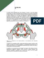 Cap 09 Fracturas de Pelvis