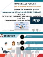 PROMOCION MODULO II.pdf