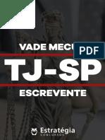 Vade_Mécum_TJSP_-_Escrevente-atualizado.pdf