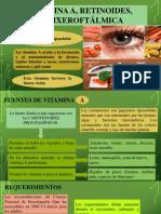 bioquimica-vitaminas