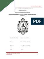 PRACTICA LABORATORIO n 1 .docx