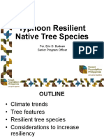 Forest Foundation Philippines 2nd Philippine Environmental Summit Typhoon Resilient Native Tree Species