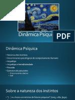 Aula de Camila Novaes - Dinâmica Psíquica