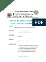 SEM  3 - GRUPO 2 - EMERGENCIA Y DESASTRES.docx