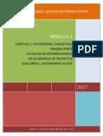 2017 Capitulo 1 Plataforma Conceptual Escuelas Internales 0